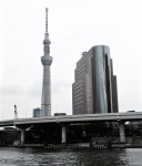 The Tokyo Skytree on the riverbank.