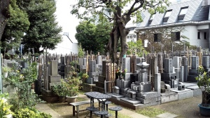 Cemetery behind the shrine.